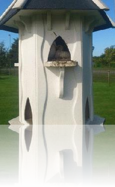 New arrivals at the Cemetery Dovecote